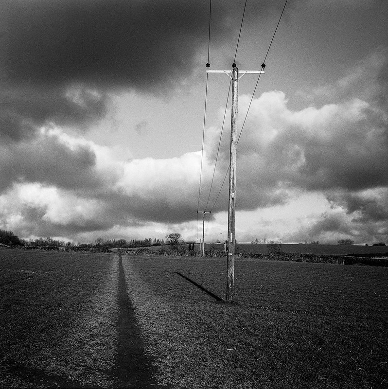 FILM - Crossing a field as the crow flies