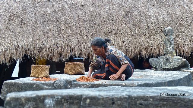 Drying betel nuts on the tombs of Kampung Tarung, Waikabubak, Sumba Barat