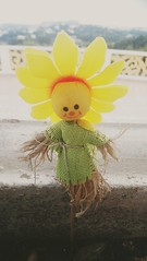 A happy scarecrow!