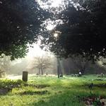 Flaybrick Memorial Gardens (hazy)