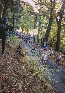 Marathonfeld nach Start