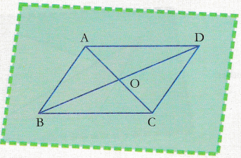 cbse-class-9-maths-lab-manual-comparison-of-diagonals-in-different-quadrilaterals-1