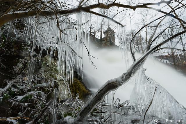 Frozen bushes., Nikon D800, AF-S Nikkor 20mm f/1.8G ED