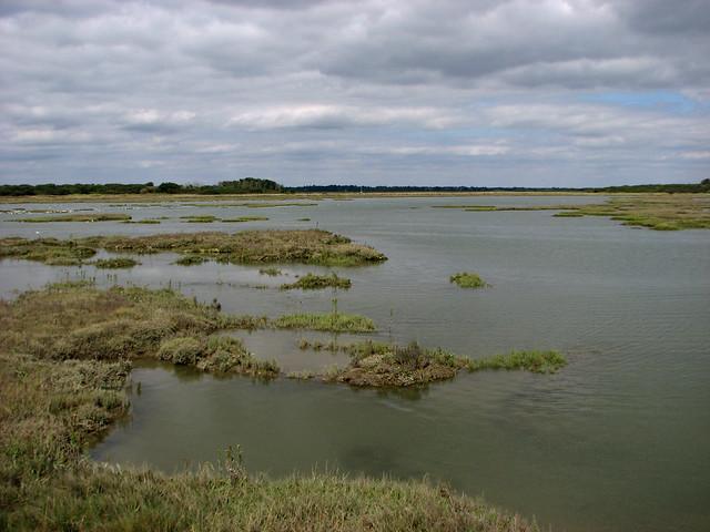 Kirby Creek, Hamford Water