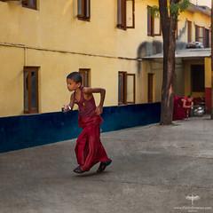 Asia / Nepal / Kathmandu / Tashi Samtenling Monastery