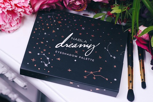 Dreamy palette Nabla revue - Big or not to big (2)