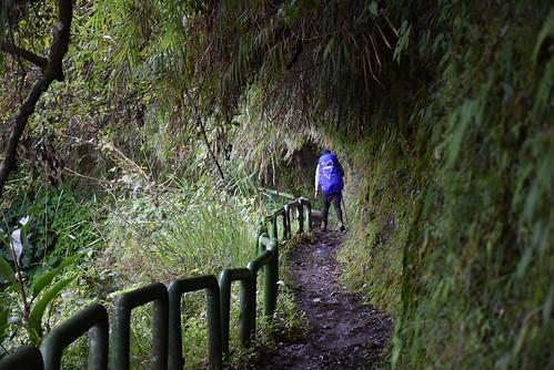 瓦拉米步道
