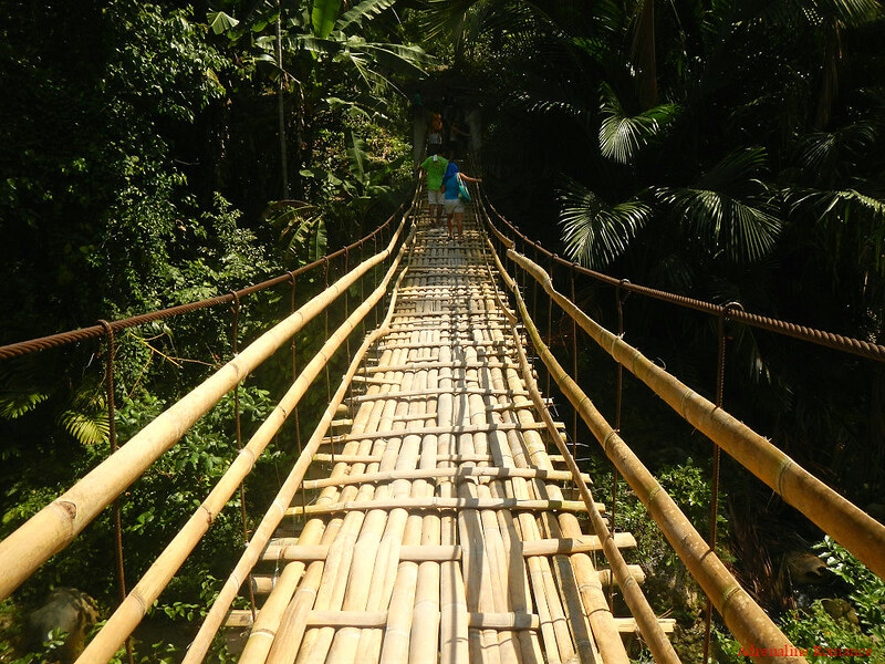 Steel and bamboo bridge