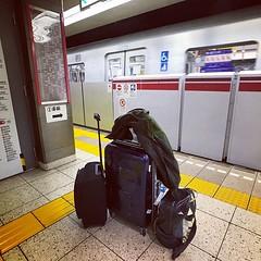 叮噹帶埋細佬,回家。 【浪遊旅人】http://ift.tt/1zmJ36B #backpackerjim #ontheway #tokyometro #metro #kiyosumi #tokyo #japan #japantrip