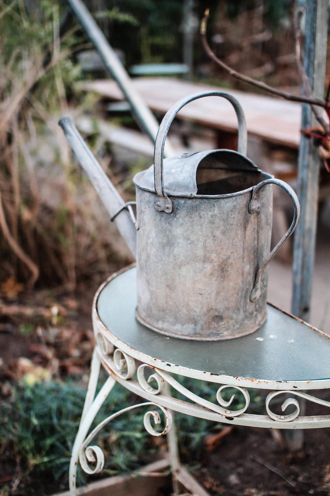Edinburgh Secret Herb Garden Review Lifestyle blogger travel UK The Little Things IMG_7678