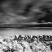 Badbea, Caithness, Scotland by iainmac2