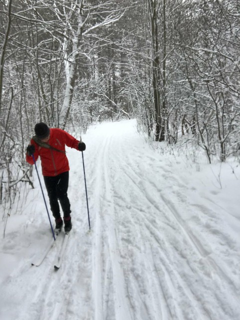 Skiing at Pine Grove trail, Ottawa