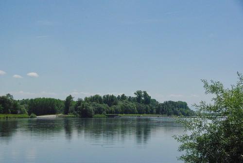 772 Le Rhin à Gerstheim (FR)