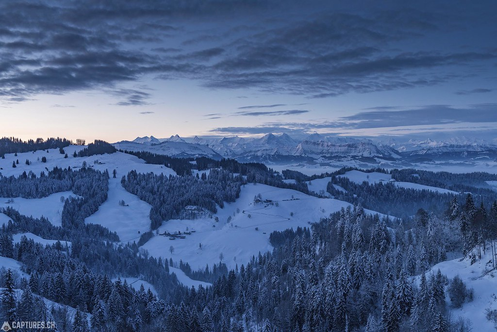 Winter Morning - Emmental