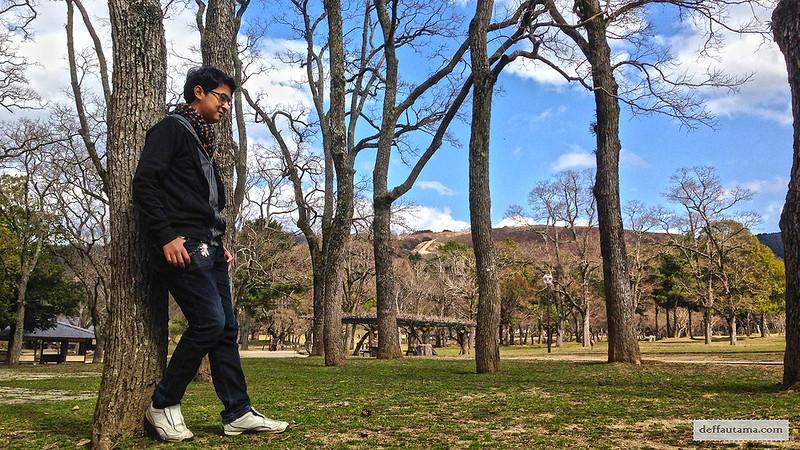 Setengah Hari di Nara - Nara Park