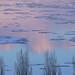 L'hiver au crépuscule by Patrice StG