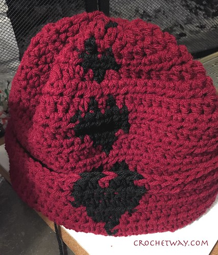 20180123-Crochet hat w/Hearts
