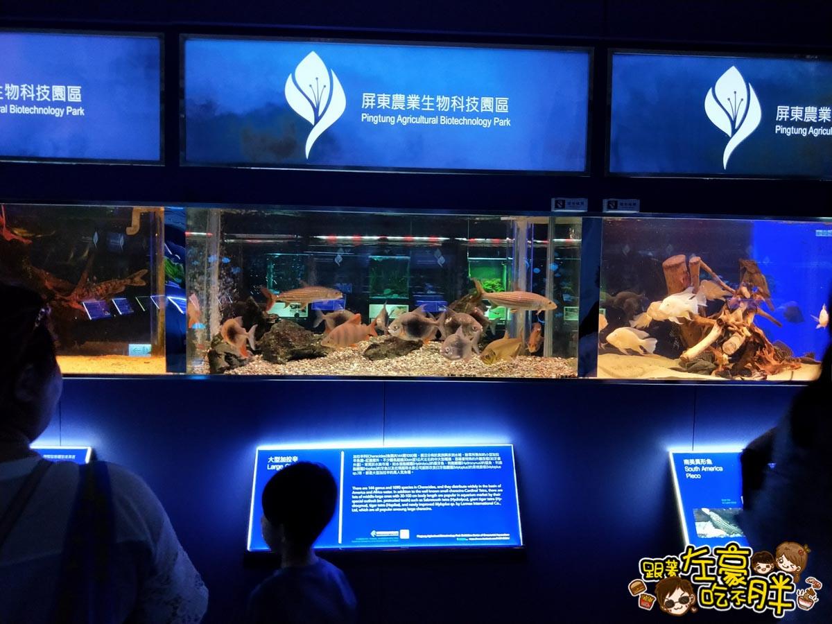 屏東生技園區國際級水族展示廳-18