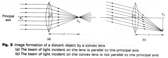 Cbse Class 10 Science Lab Manual Focal Length Of Concave