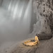 Niagara Falls in winter by Marc McDermott