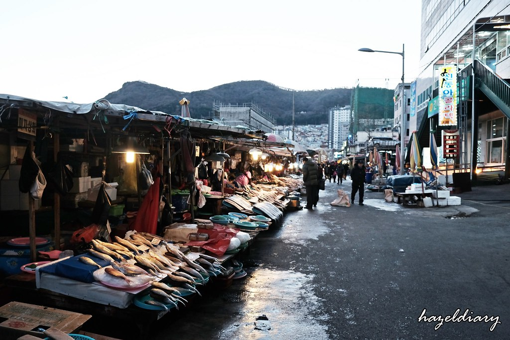 Busan-Jalgachi Fish Market-1