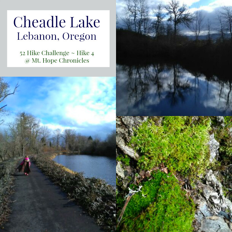 Cheadle Lake Hike @ Mt. Hope Chronicles