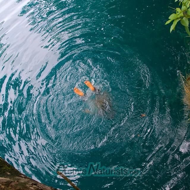 naturist swimming 0002 Cenote Azul, Chetumal, Quintana-Roo, Mexico