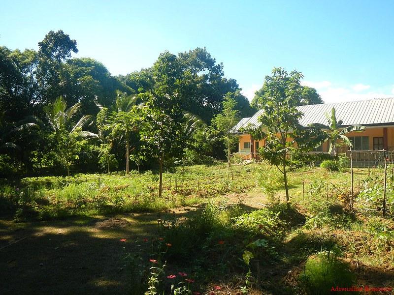 Cebu Southern Ecological Farm