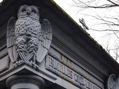 Owl tomb