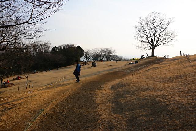 20150211_曽我丘陵_9003