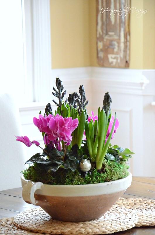 Dish Garden-Housepitality Designs-3
