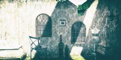 Life amongst ruins