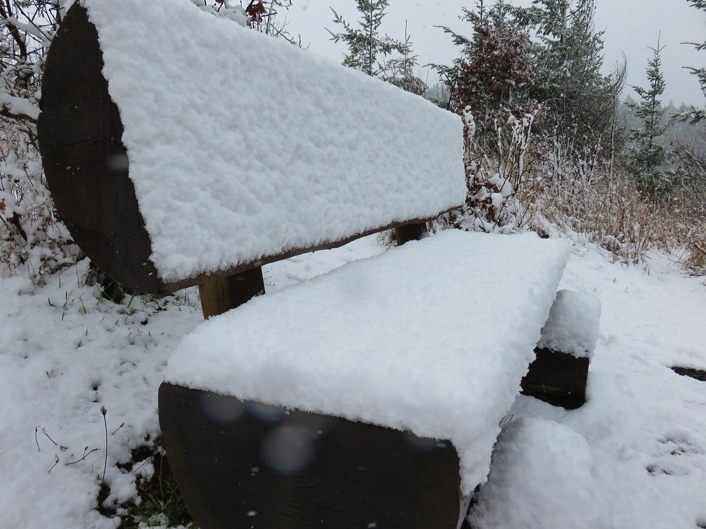 Snow covered bench along the Powder House Trail