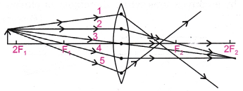 cbse-class-10-science-practical-skills-image-formation-by-a-convex-lens-21
