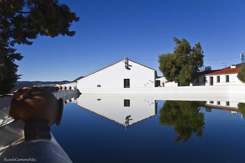 reflejos en azul - Reflections in blue