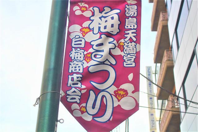 yushimatenjinume-gosyuin02083