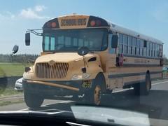 4592 - 2007 IC CE200 - Hillsborough County School Bus
