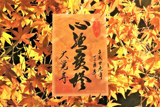 daikakuji-gosyuin048