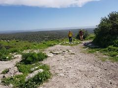 2018-03-03_Israel_Trail-39