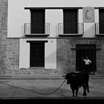 Teléfono del Ayuntamiento de Albentosa