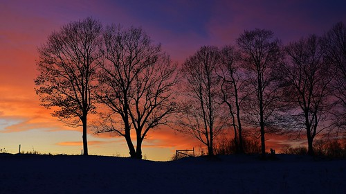 sunset silhouette trees fence clouds newyork ny upstate nikon d610 wow sky color fire beautiful nassau farm nature outdoors light rwgrennan rgrennan ryan grennan earth explore planet inspire landscape winter view photography usa love rensselaer county