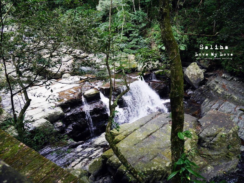 新北三峽一日遊踏青景點推薦滿月圓森林遊樂區 (40)