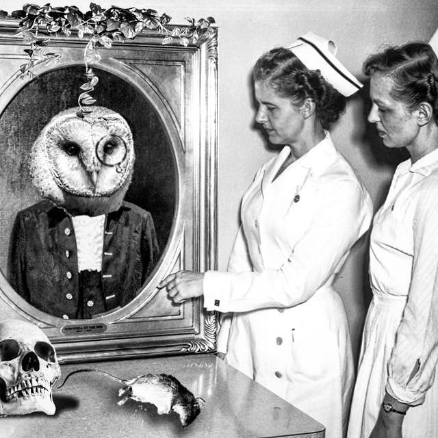 Nurses visit the Doctor Owlsley shrine at Everbleak Hospital
