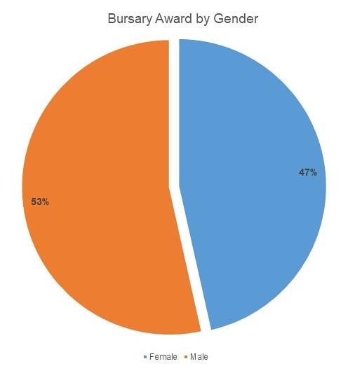 3ie Bursary programme