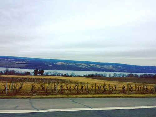 I could VERY easily live out my days in New York's Finger Lakes region. When I go there I feel like I'm part of something older but which is enduring for the future. #senecalake #fingerlakes