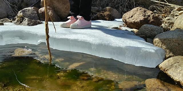 얼음 꽁꽁