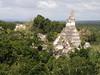 Tikal, foto: Olga Vilímková