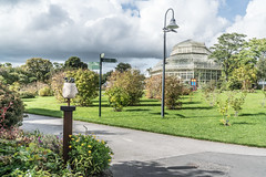 NATIONAL BOTANIC GARDENS IN DUBLIN [GLASNEVIN SEPTEMBER 2017]-136341