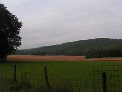 20070903 13066 0710 Jakobus Feld Wald Wiese Zaun Hügel