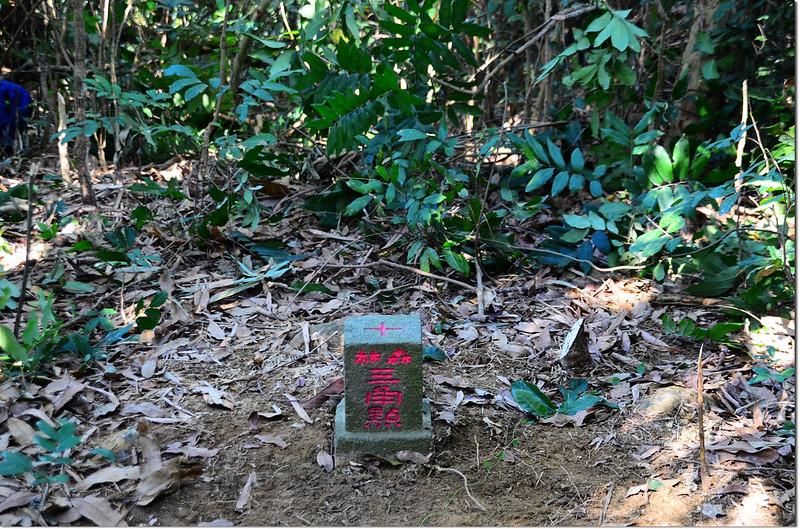 東膏蚋山山字森林三角點(Elev. 141 m) 1